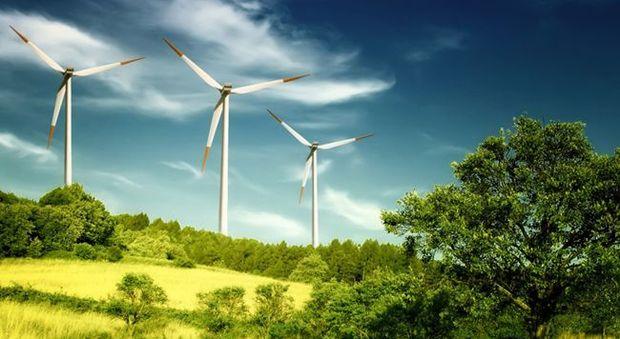 Sen, Free:  Puntare Su Rinnovabili, Biomasse E Mobilità Condivisa
