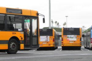 Trasporto pubblico tpl studenti livello essenziale trasporto