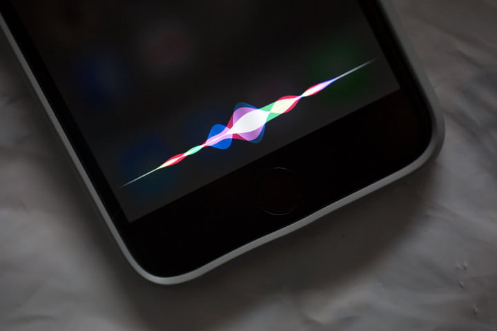Apple Causa