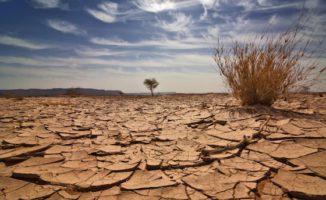 Sul Clima Pesa L'incognita Trump