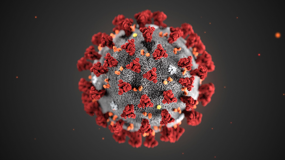 Coronavirus, Sars CoV-2 non è nato in laboratorio. Studio Nature Medicine - Startmag