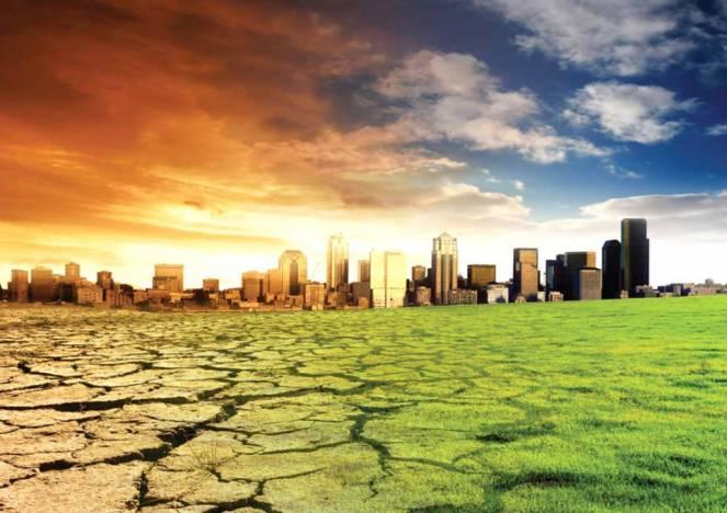 cambiamento climatico università