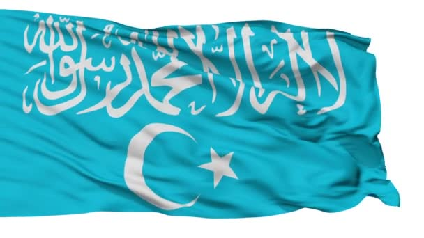 East Turkestan Islamic Movement
