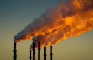 prezzi carbonio