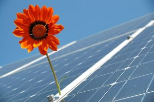 GREEN NEW DEAL SOLARE Free
