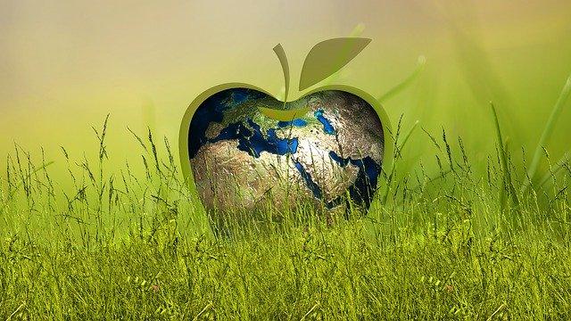 Green Recovery sostenibilità